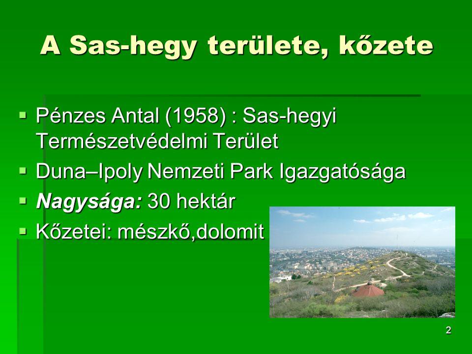 A Sas-hegy területe, kőzete