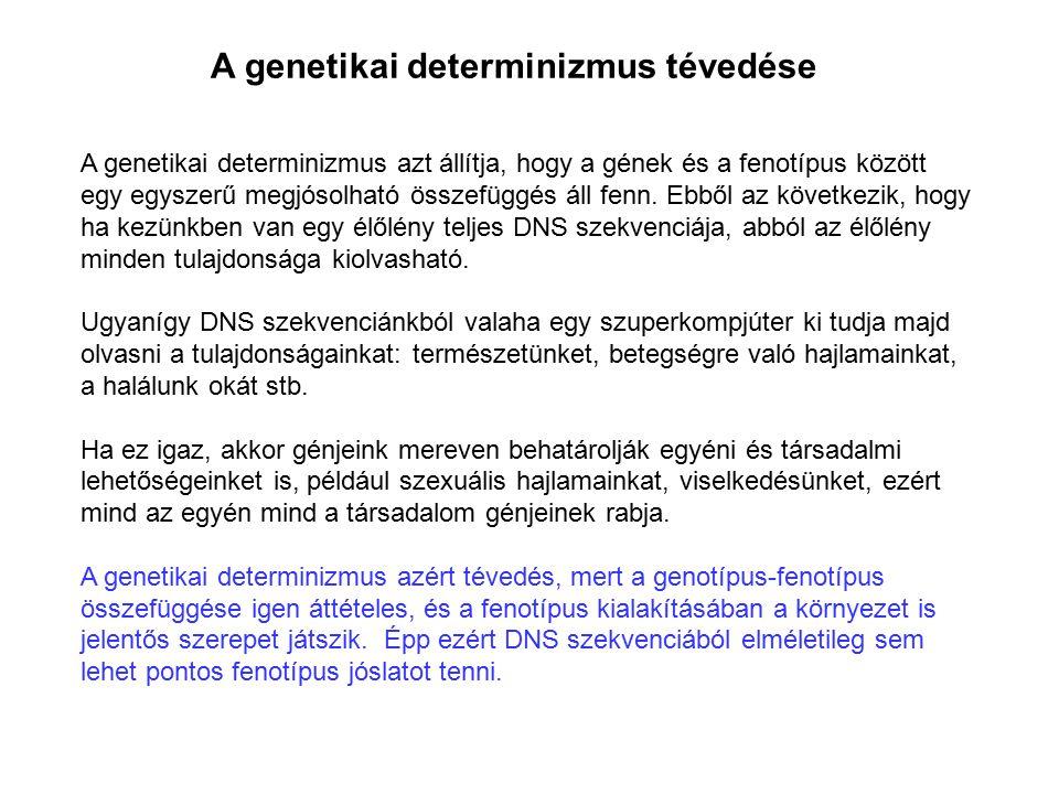 A genetikai determinizmus tévedése