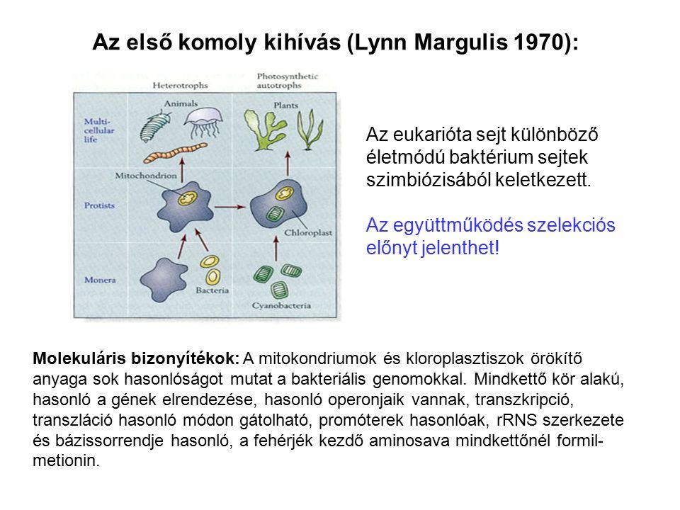 Az első komoly kihívás (Lynn Margulis 1970):