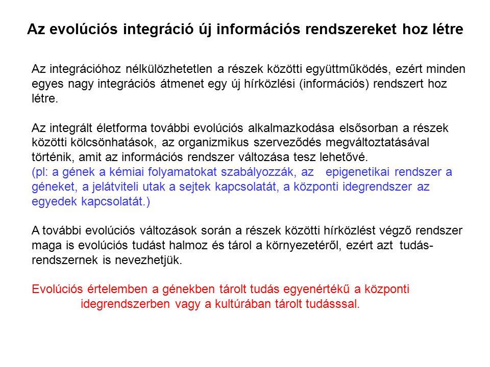 Az evolúciós integráció új információs rendszereket hoz létre