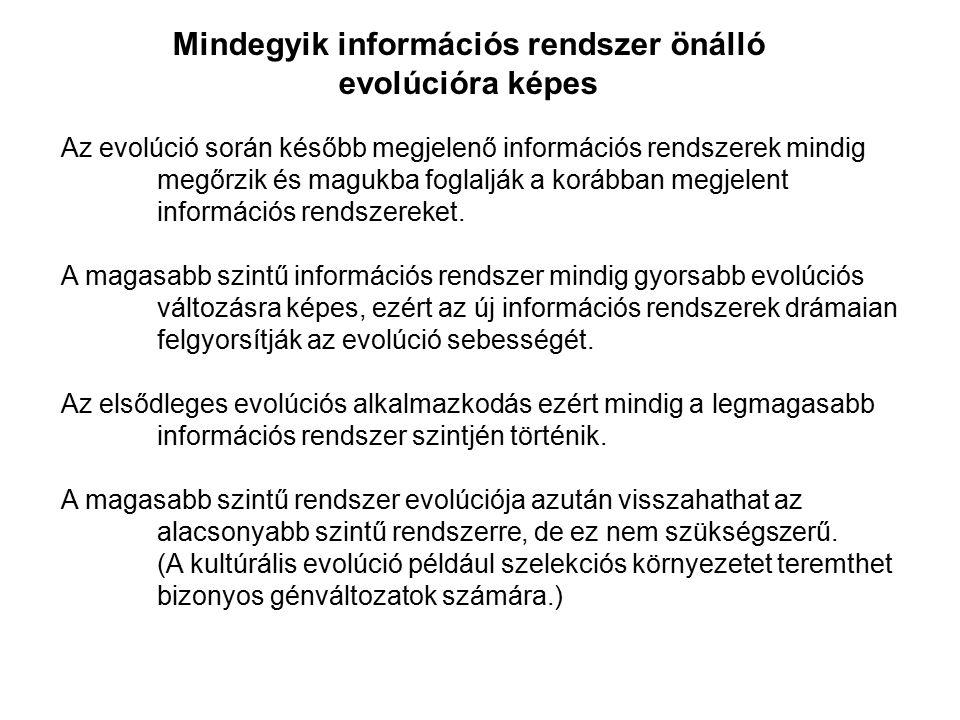 Mindegyik információs rendszer önálló evolúcióra képes