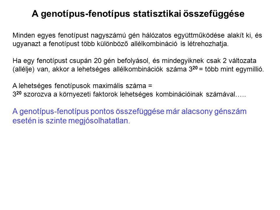 A genotípus-fenotípus statisztikai összefüggése