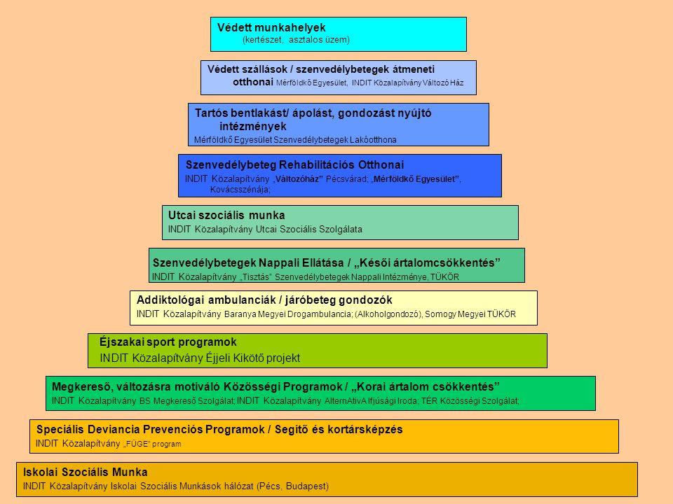 Az INDIT Közalapítvány intézményi rendszere ELLÁTÁSI PIRAMIS