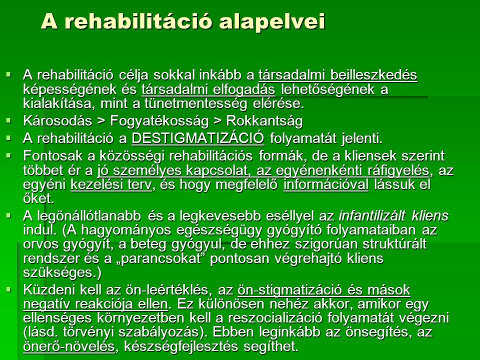 A rehabilitáció alapelvei