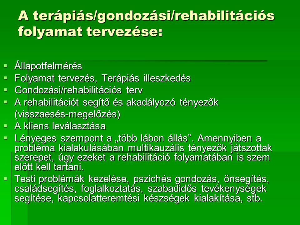 A terápiás/gondozási/rehabilitációs folyamat tervezése: