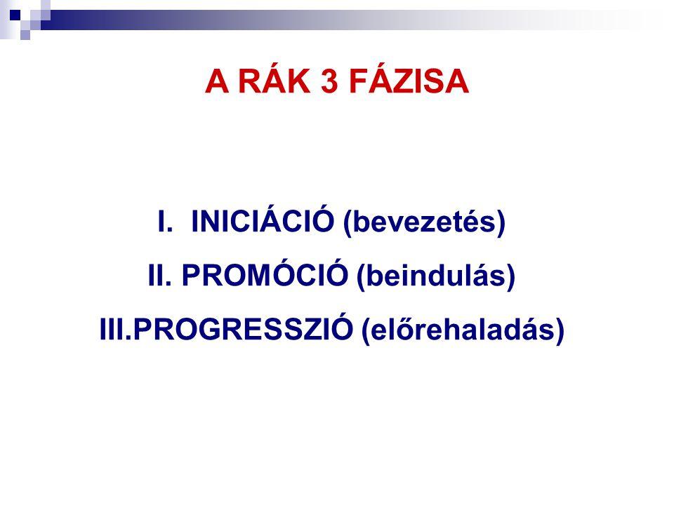 INICIÁCIÓ (bevezetés) PROGRESSZIÓ (előrehaladás)