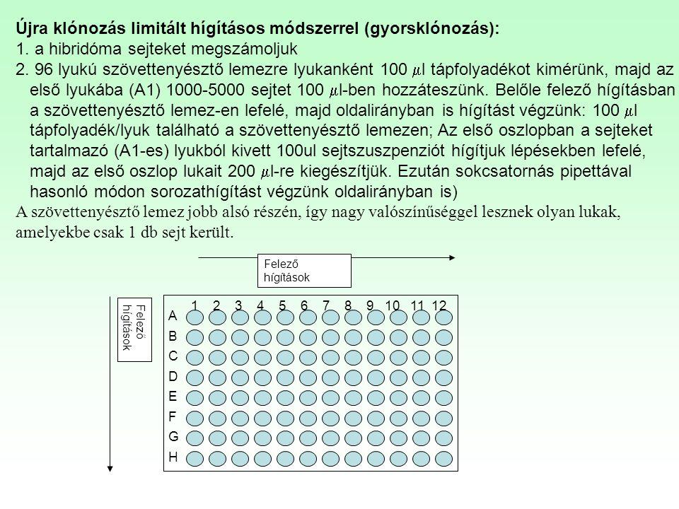 Újra klónozás limitált hígításos módszerrel (gyorsklónozás):