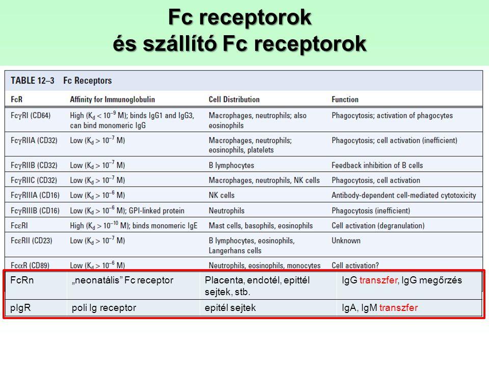 és szállító Fc receptorok