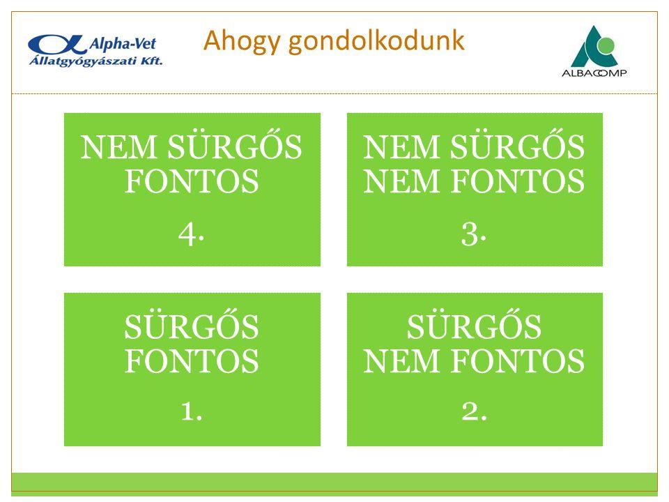 NEM SÜRGŐS FONTOS 4. NEM SÜRGŐS NEM FONTOS 3. SÜRGŐS FONTOS 1.