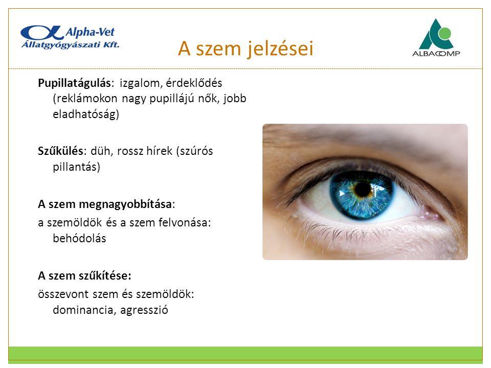 A szem jelzései Pupillatágulás: izgalom, érdeklődés (reklámokon nagy pupillájú nők, jobb eladhatóság)