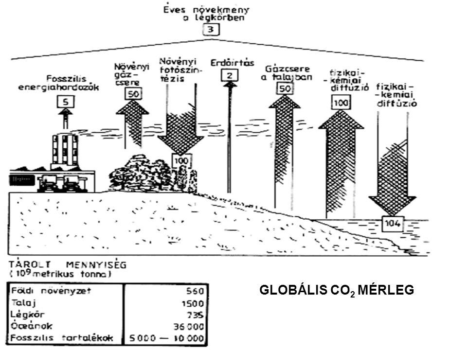 GLOBÁLIS CO2 MÉRLEG