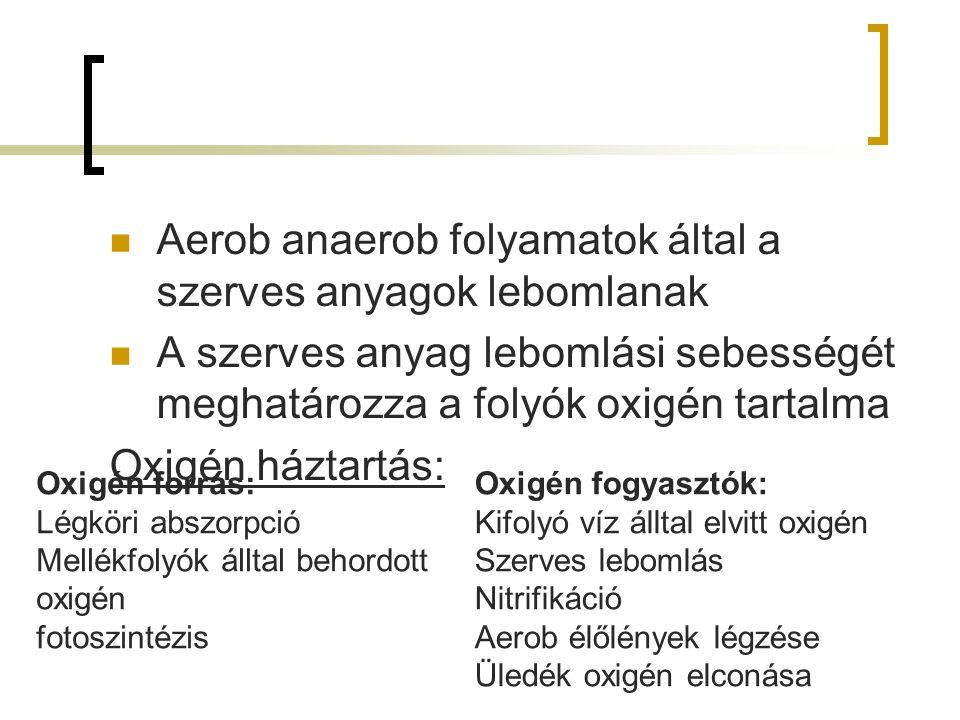 Aerob anaerob folyamatok által a szerves anyagok lebomlanak