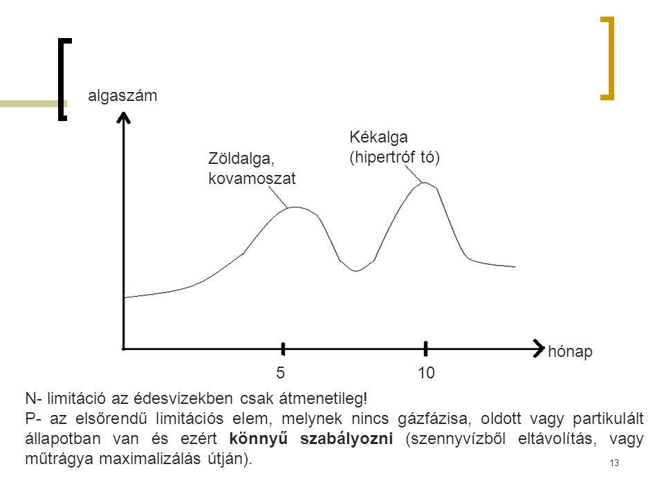algaszám Kékalga (hipertróf tó) Zöldalga, kovamoszat. hónap. 5. 10. N- limitáció az édesvizekben csak átmenetileg!