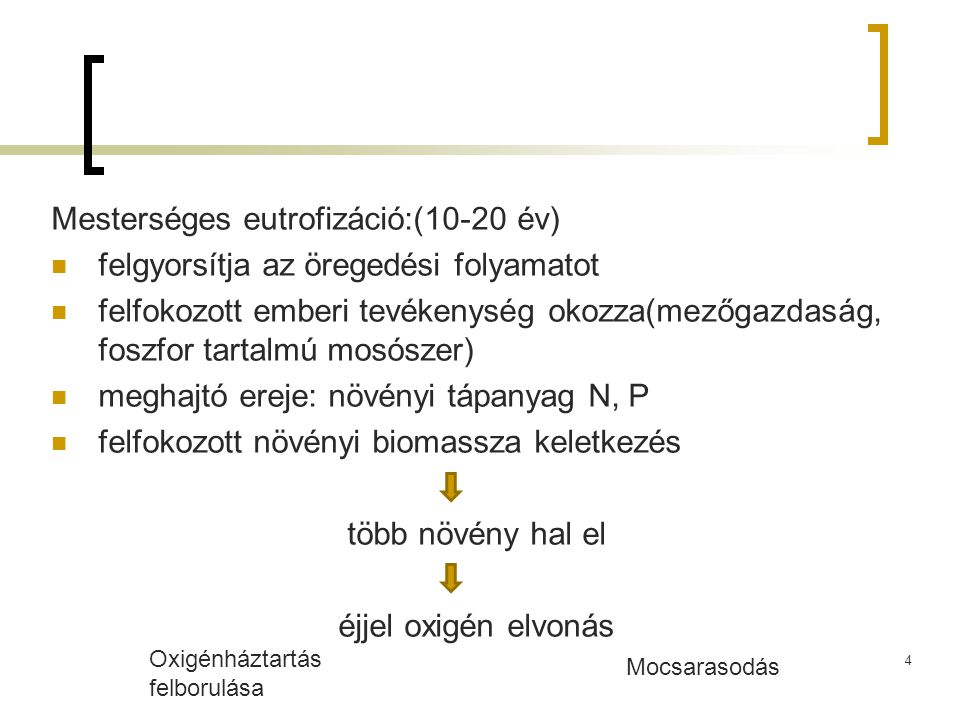 Mesterséges eutrofizáció:(10-20 év)