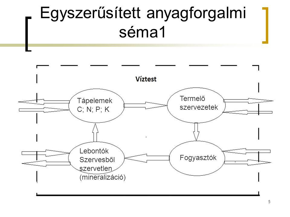 Egyszerűsített anyagforgalmi séma1