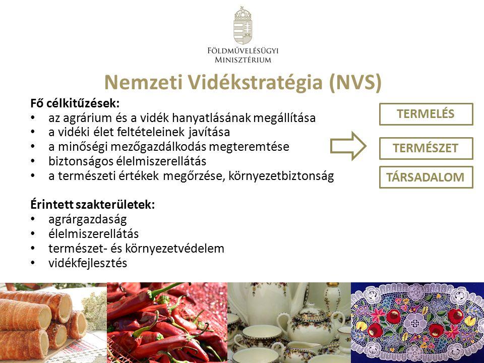 Nemzeti Vidékstratégia (NVS)