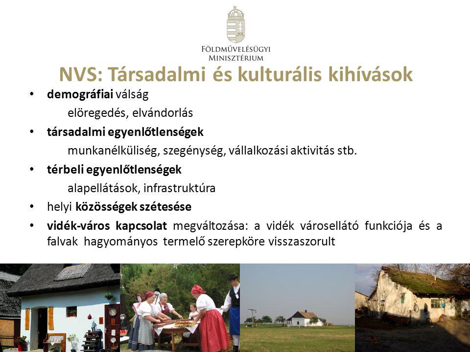 NVS: Társadalmi és kulturális kihívások