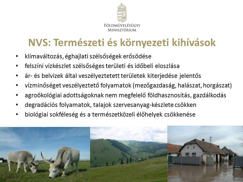 NVS: Természeti és környezeti kihívások
