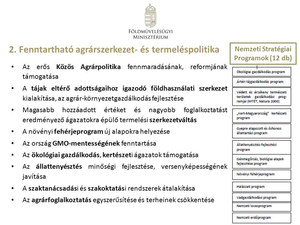 Nemzeti Stratégiai Programok (12 db)