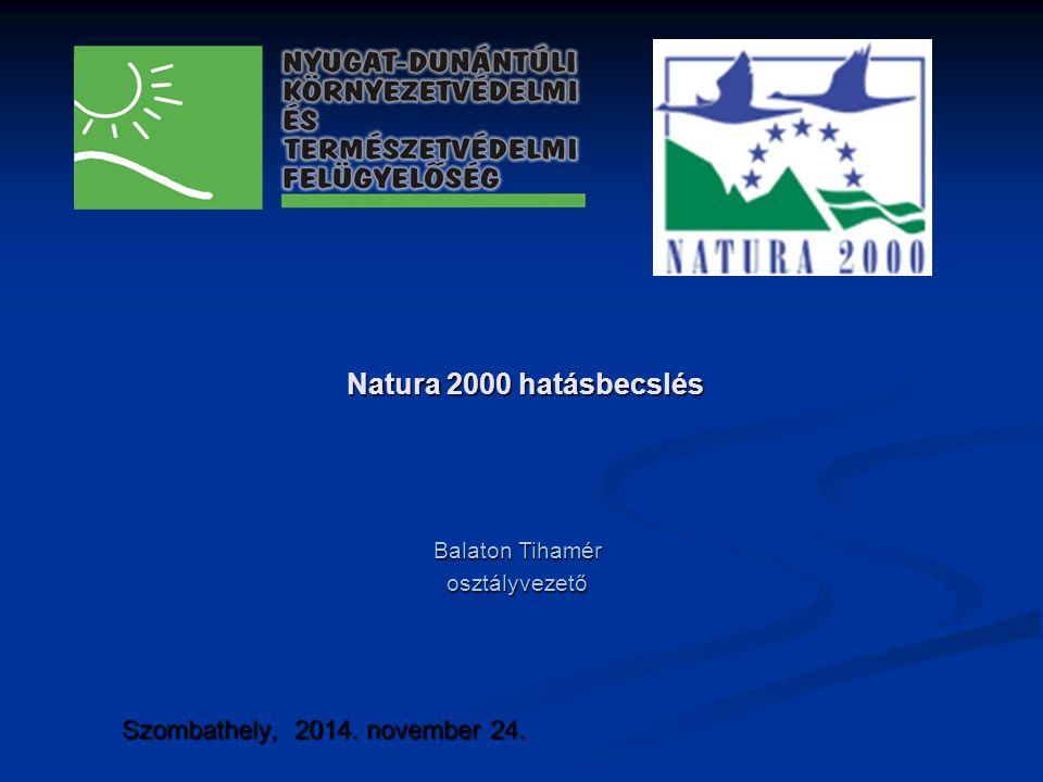 Natura 2000 hatásbecslés Szombathely, 2014. november 24.