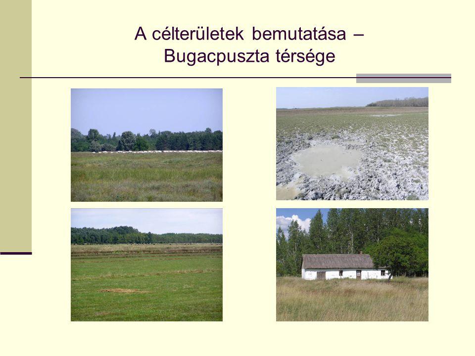 A célterületek bemutatása – Bugacpuszta térsége