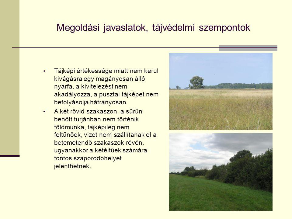 Megoldási javaslatok, tájvédelmi szempontok