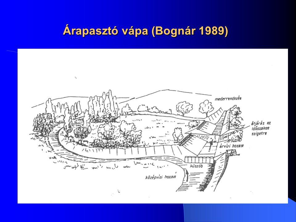 Árapasztó vápa (Bognár 1989)