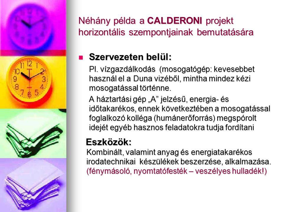 Néhány példa a CALDERONI projekt horizontális szempontjainak bemutatására