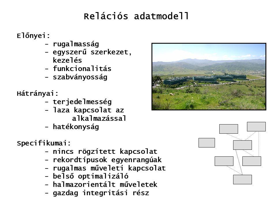 Relációs adatmodell Előnyei: - rugalmasság - egyszerű szerkezet,