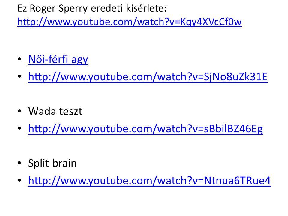 Női-férfi agy http://www.youtube.com/watch v=SjNo8uZk31E Wada teszt