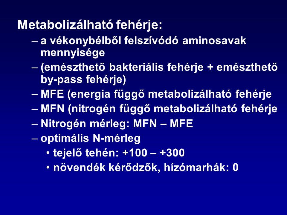 Metabolizálható fehérje: