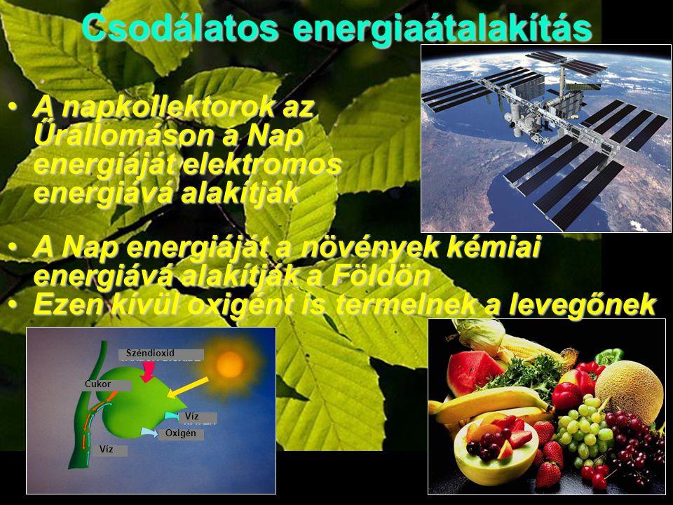 Csodálatos energiaátalakítás