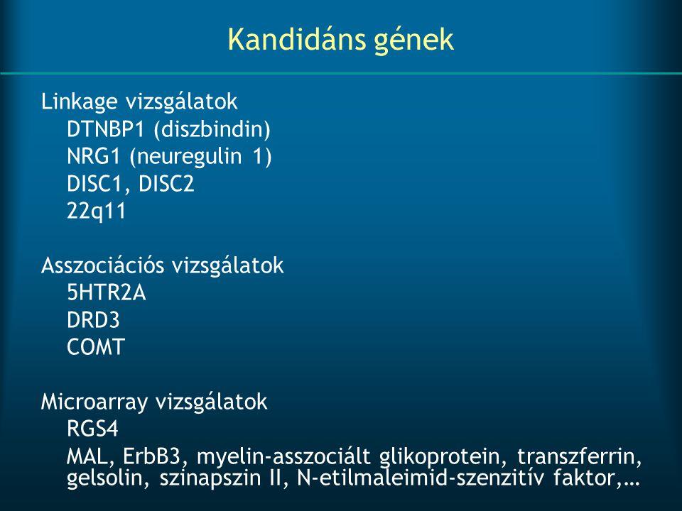Kandidáns gének Linkage vizsgálatok DTNBP1 (diszbindin)