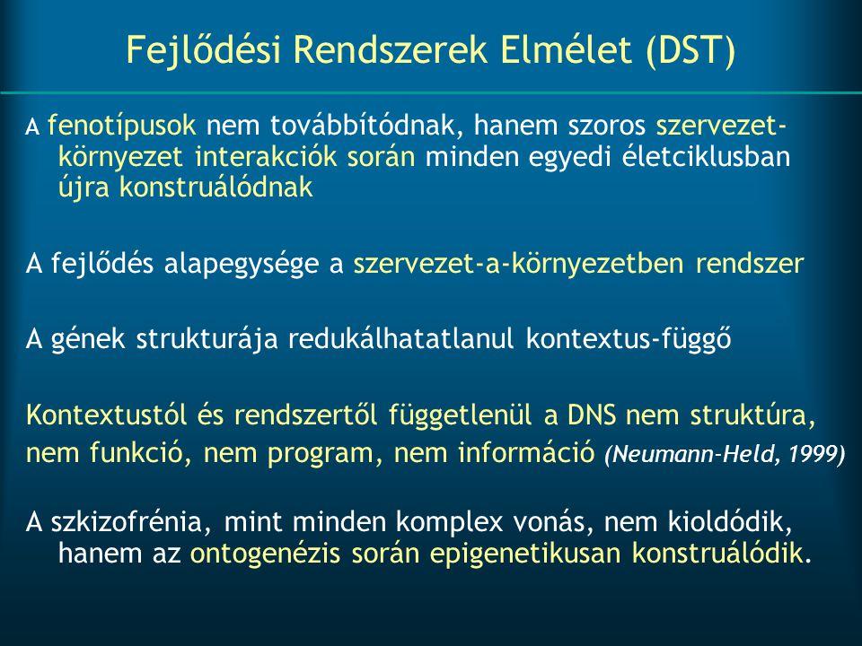 Fejlődési Rendszerek Elmélet (DST)