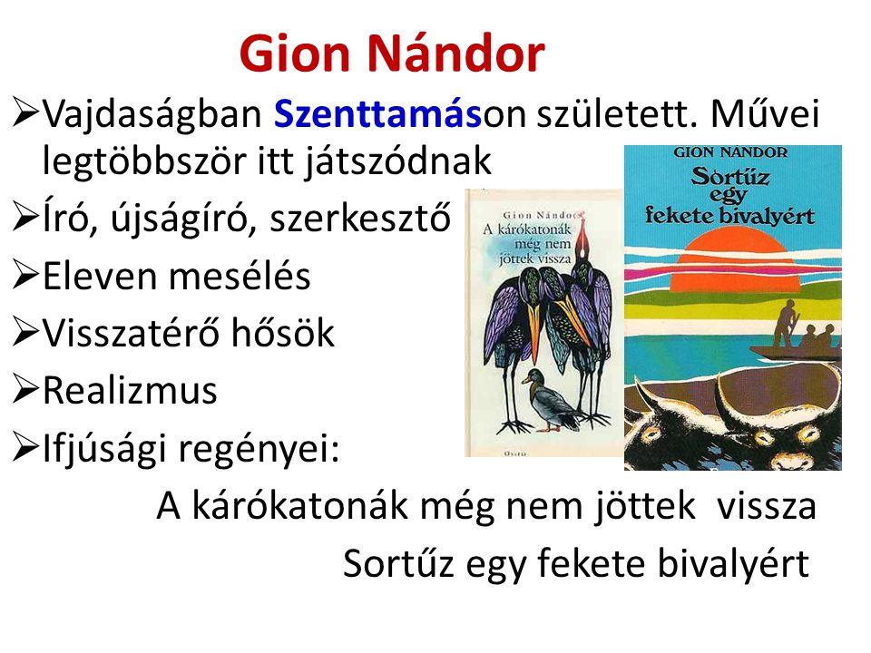 Gion Nándor Vajdaságban Szenttamáson született. Művei legtöbbször itt játszódnak. Író, újságíró, szerkesztő.