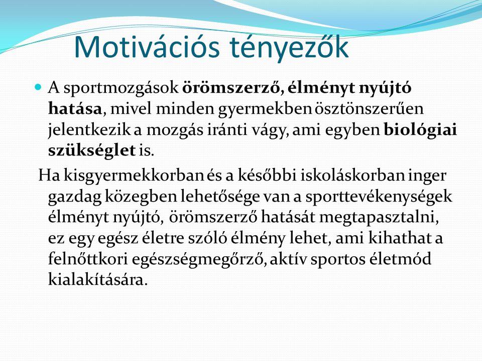 Motivációs tényezők