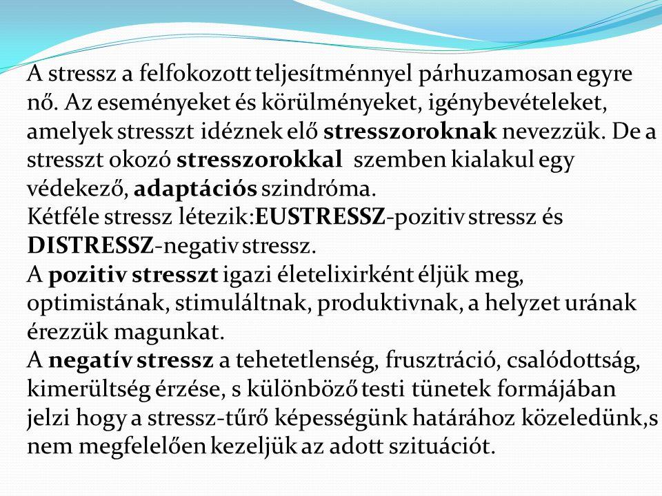 A stressz a felfokozott teljesítménnyel párhuzamosan egyre nő