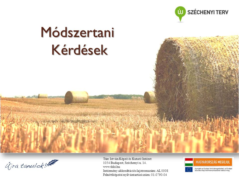 Módszertani Kérdések Türr István Képző és Kutató Intézet