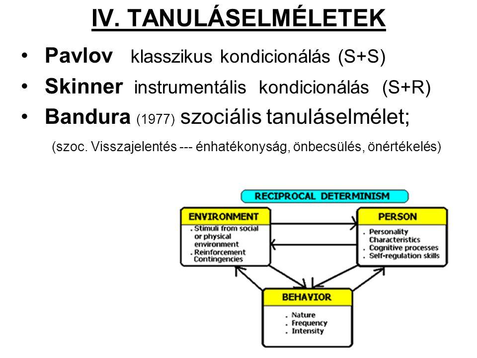 IV. TANULÁSELMÉLETEK Pavlov klasszikus kondicionálás (S+S)