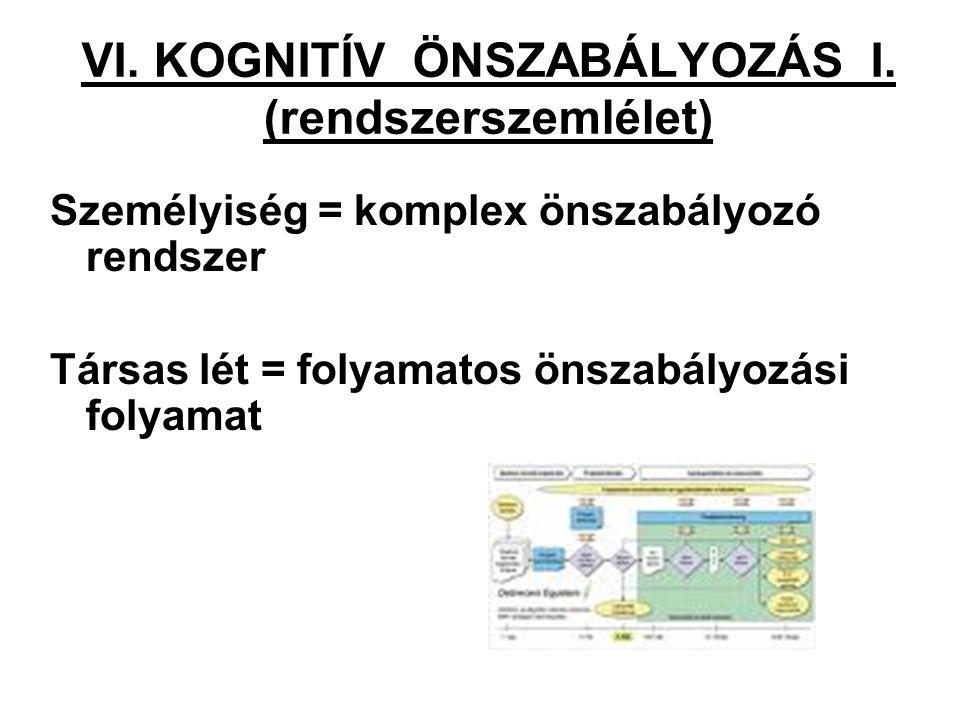 VI. KOGNITÍV ÖNSZABÁLYOZÁS I. (rendszerszemlélet)