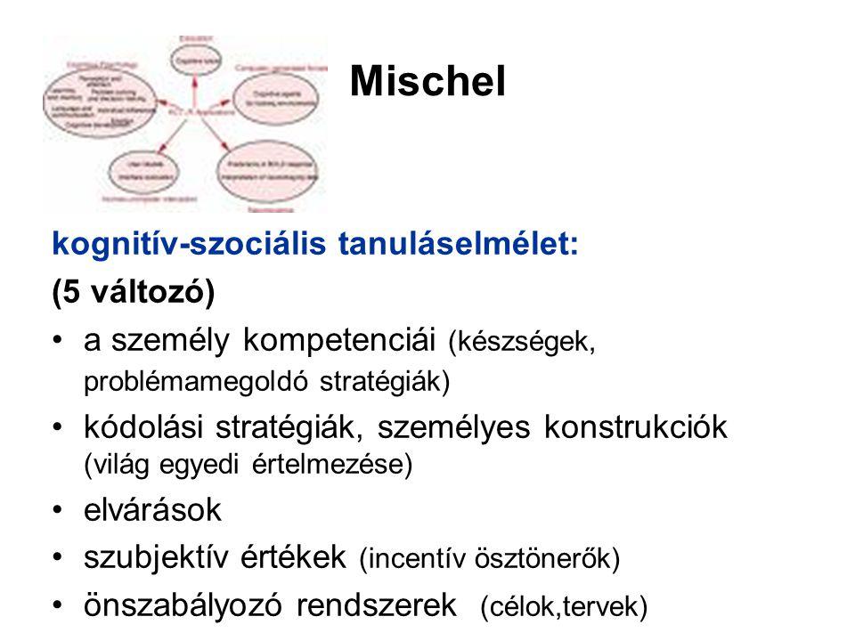 Mischel kognitív-szociális tanuláselmélet: (5 változó)