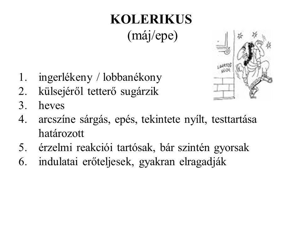 KOLERIKUS (máj/epe) ingerlékeny / lobbanékony