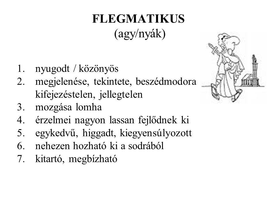 FLEGMATIKUS (agy/nyák)