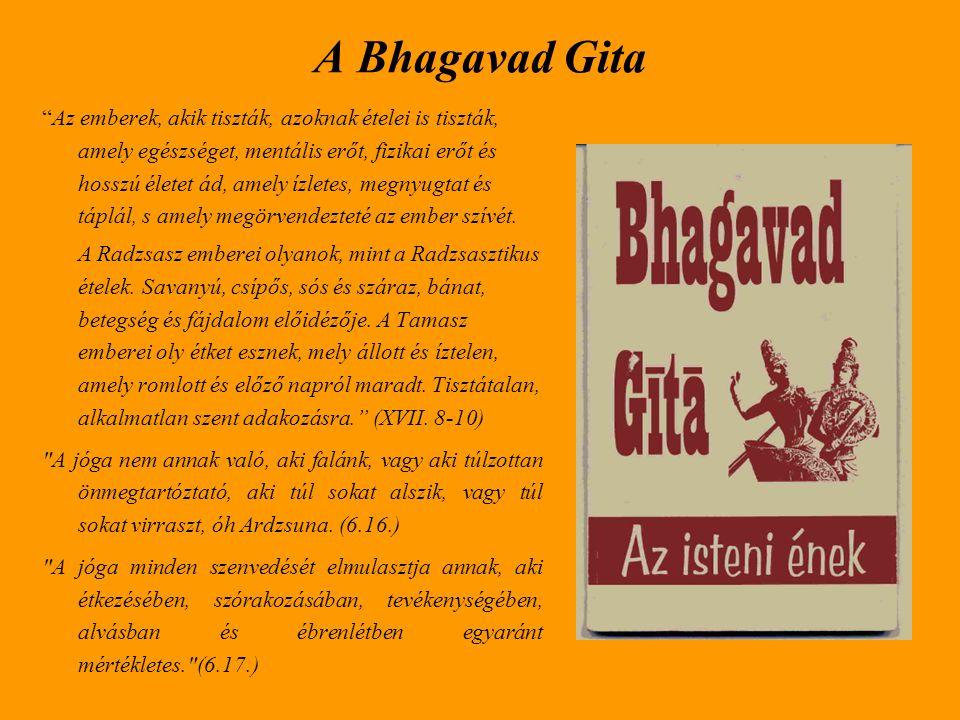 A Bhagavad Gita
