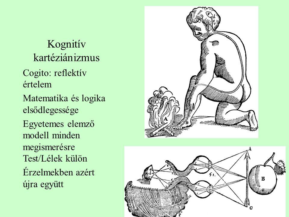 Kognitív kartéziánizmus