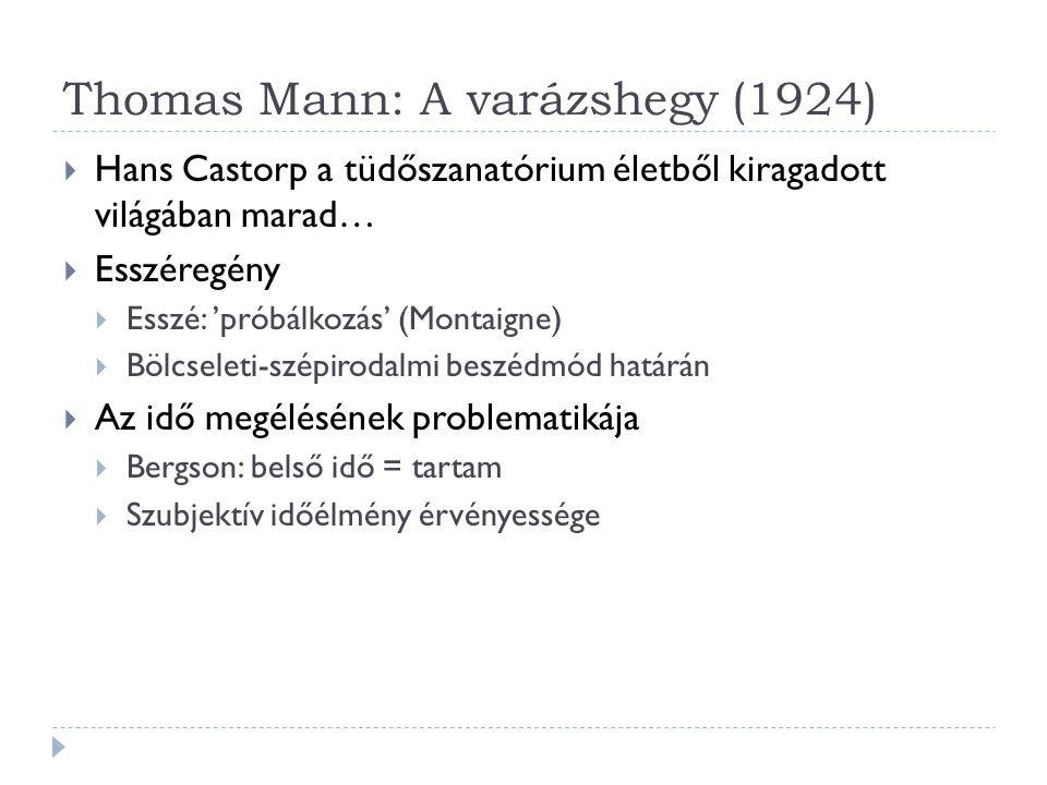 Thomas Mann: A varázshegy (1924)