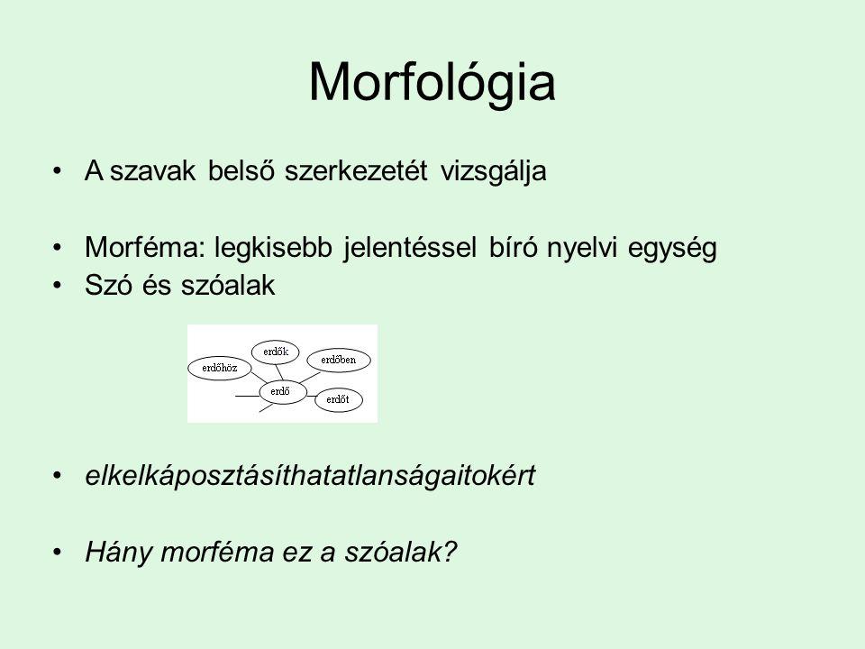 Morfológia A szavak belső szerkezetét vizsgálja