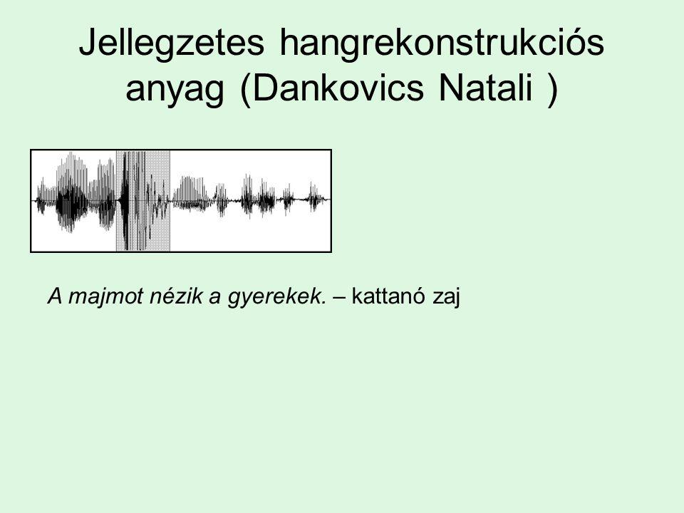 Jellegzetes hangrekonstrukciós anyag (Dankovics Natali )