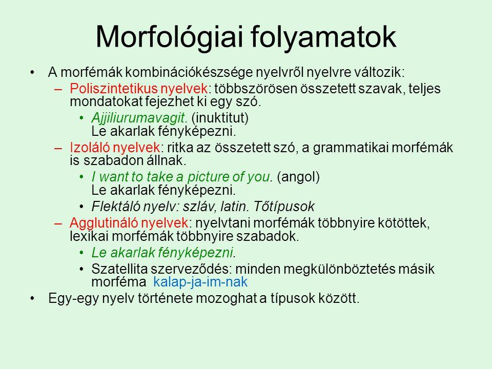 Morfológiai folyamatok