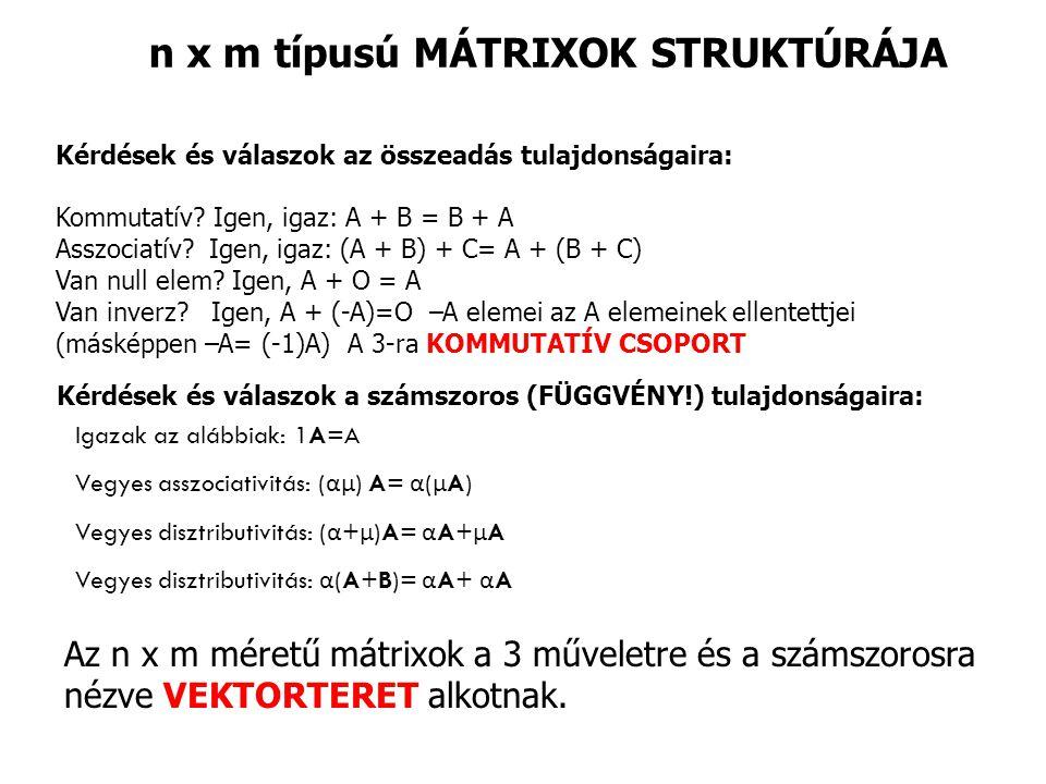 n x m típusú MÁTRIXOK STRUKTÚRÁJA
